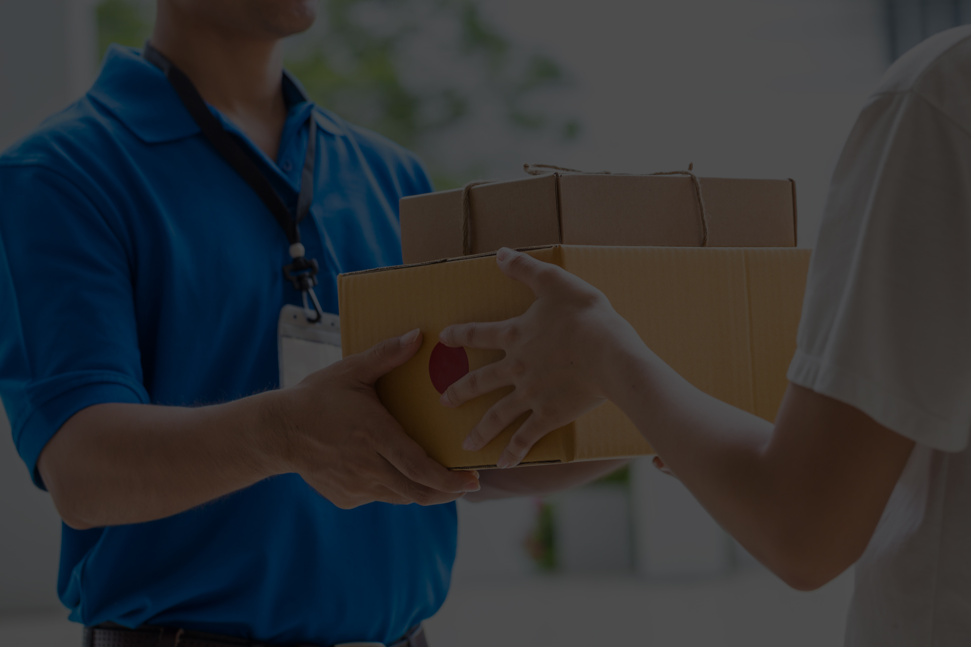 Professional Courier Service Picture
